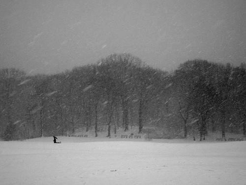 Prospect-park-snow-2-09